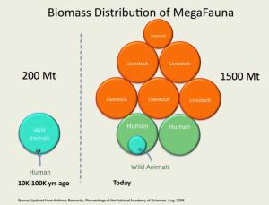 Sailesh biomass 2
